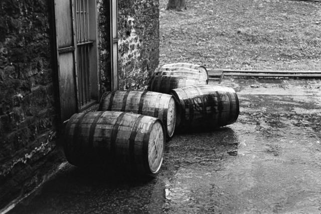 Hitting the Bourbon Trail