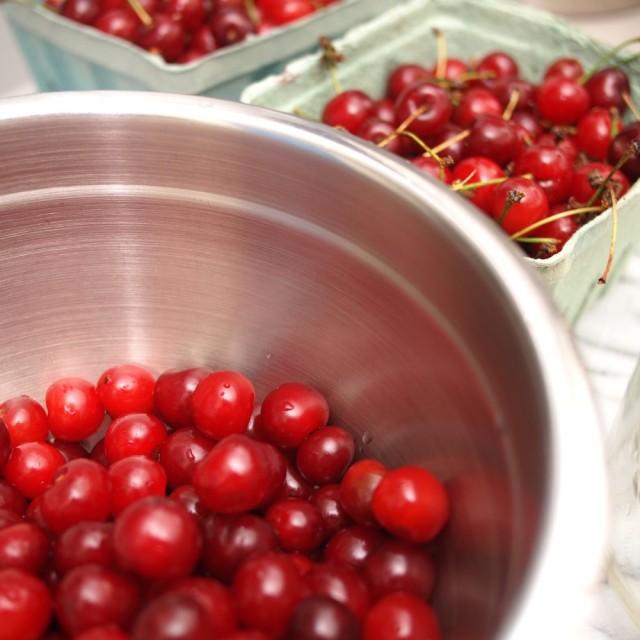 Ginjinha; or, Portuguese Sour Cherry Liqueur