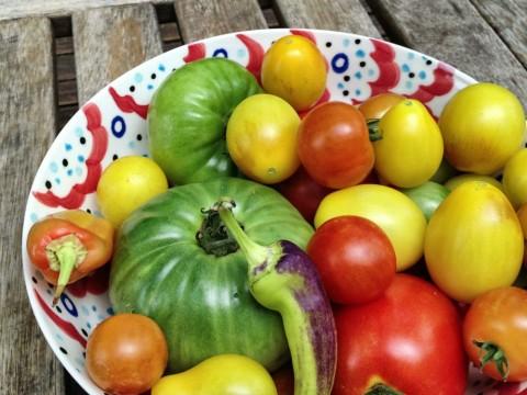 Moussaka tomatoes