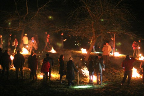 Cider: It's Time for Wassail
