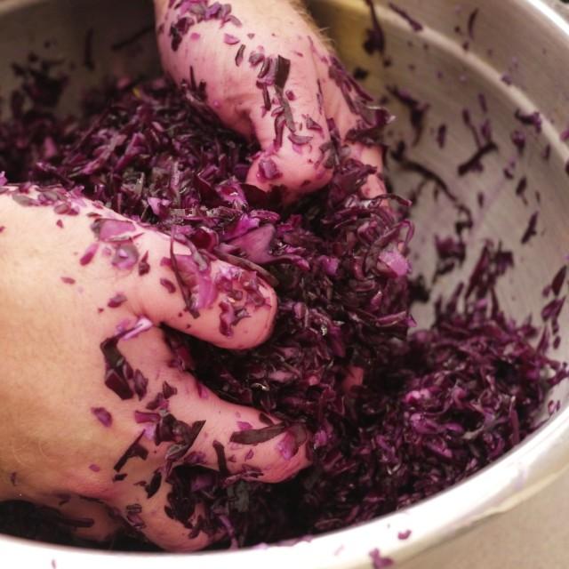 Purple Sauerkraut, Well Garlicked