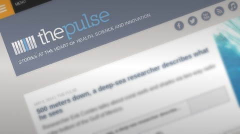 On the Radio -- WHYY's The Pulse