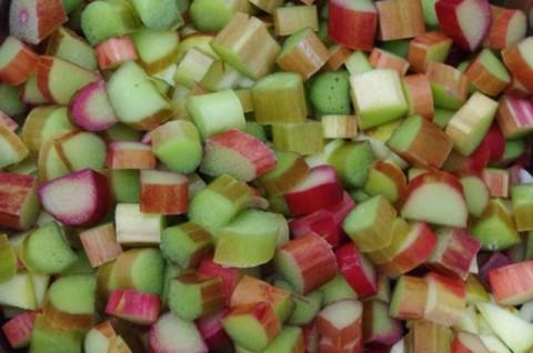 Rhubarb raw